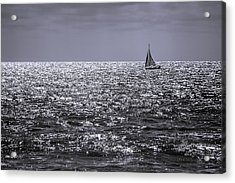 Late Afternoon Sailing Acrylic Print
