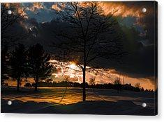 Late Afternoon Sun Acrylic Print