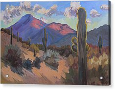 Late Afternoon Tucson 2 Acrylic Print