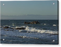 Late Afternoon Waves Acrylic Print