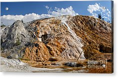 Late Day Sun On Palette Spring Acrylic Print by Charles Kozierok