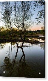 Late Evening Reflections IIi Acrylic Print