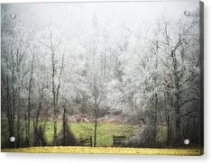 Late Fall Ice Storm Central Ma 2008 Acrylic Print by Richard Danek