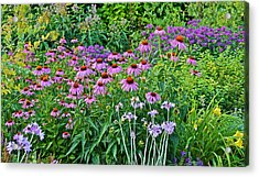 Late July Garden 2 Acrylic Print by Janis Nussbaum Senungetuk