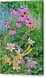 Late July Garden 3 Acrylic Print by Janis Nussbaum Senungetuk