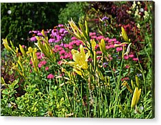 Late July Garden 1 Acrylic Print by Janis Nussbaum Senungetuk