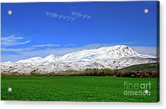 Late Spring View Acrylic Print by Robert Bales