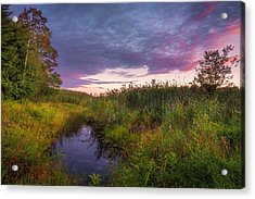 Late Summer Color At Blue Marsh Acrylic Print