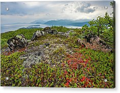 Acrylic Print featuring the photograph Late Summer In The North by Maciej Markiewicz