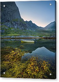 Acrylic Print featuring the photograph Late Summer by Maciej Markiewicz