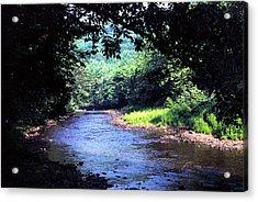 Late Summer On Williams River Acrylic Print by Thomas R Fletcher