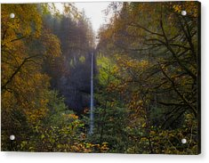 Latourell Falls In Autumn Acrylic Print by David Gn