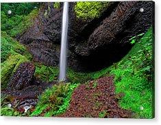 Latourell Falls Oregon Acrylic Print by Jonathan Davison