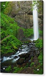 Latourell Falls Oregon Acrylic Print