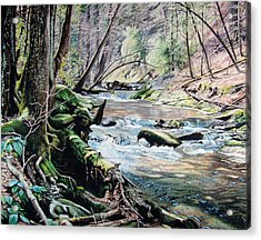 Laurel Creek  Acrylic Print by Jennifer Oakley-Delaplante