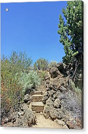 Acrylic Print featuring the photograph Lava Beds National Monument California 20170728 124524 by Wingsdomain Art and Photography