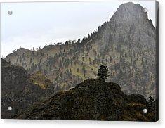 Lava Island In The Missouri Acrylic Print by Kae Cheatham