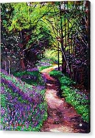 Lavendar Lane Acrylic Print