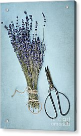 Acrylic Print featuring the photograph Lavender And Antique Scissors by Stephanie Frey