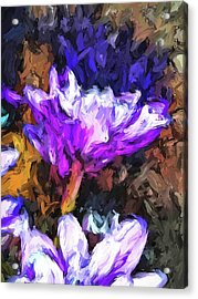 Lavender And White Flower With Reflection Acrylic Print