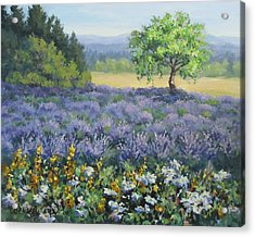 Lavender And Wildflowers Acrylic Print by Karen Ilari