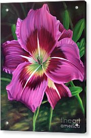 Lavender Daylily Acrylic Print