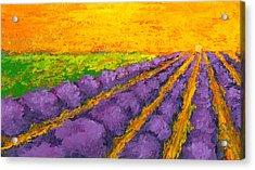 Lavender Field A Modern Impressionistic Artwork In Palette Knife Acrylic Print