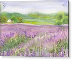 Lavender Field In Italy Acrylic Print