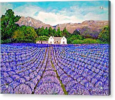 Lavender Fields Acrylic Print by Michael Durst