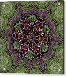 Lavender Mandala 2 Acrylic Print