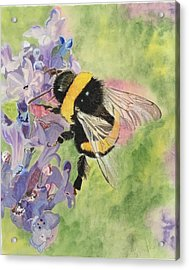 Lavender Visitor Acrylic Print