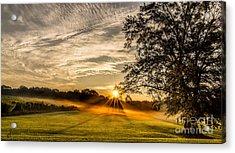 Lawn Sunrise Acrylic Print