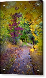 Layers Of Leaves Acrylic Print