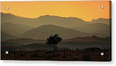 Layers Of Lucidity Acrylic Print