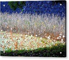 Layers Acrylic Print by Roberto Alamino