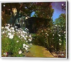 Lazy Backyard Afternoons Acrylic Print