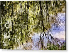 Acrylic Print featuring the photograph Lazy Day by John Hansen