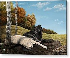 Lazy Day Acrylic Print by Laura Klassen