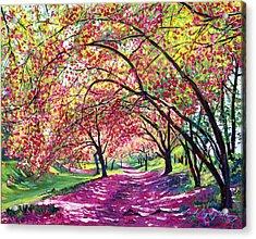 Lazy On A Sunday Central Park Acrylic Print by David Lloyd Glover