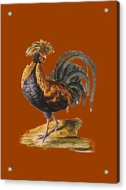 Le Coq Rooster T Shirt Design Acrylic Print by Bellesouth Studio