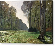 Le Pave De Chailly Acrylic Print by Claude Monet