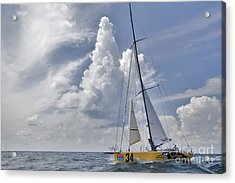 Le Pingouin Race Yacht Open 60 Acrylic Print by Dustin K Ryan