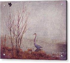 Le Retour De Mon Heron Acrylic Print by Aimelle