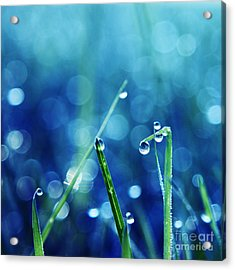 Le Reveil - S01a Acrylic Print by Variance Collections