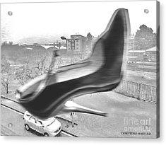 Flying Stiletto Acrylic Print by Don Pedro De Gracia