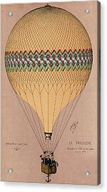 Le Tricolore 2 Acrylic Print