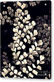 Leaf Abstract 15 Sepia Acrylic Print by Sarah Loft