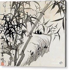 Leaf C Acrylic Print by Rang Tian