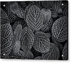 Acrylic Print featuring the photograph Leaf Pattern by Wayne Sherriff