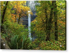 Leaf Peeping And Waterfall Acrylic Print by David Gn